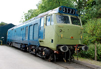 50042 at Buckfastleigh on Saturday 30 August 2014